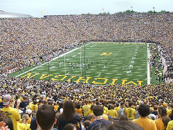 Michigan  arena